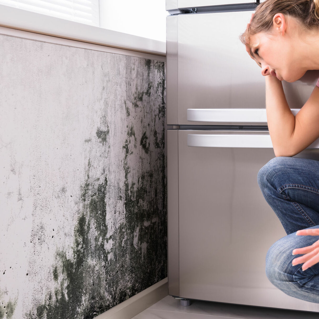 mold growth in kitchen